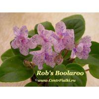 Rob's Boolaroo (R. Robinson)